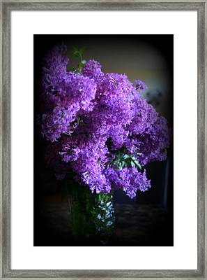 Lilac Bouquet Framed Print by Kay Novy