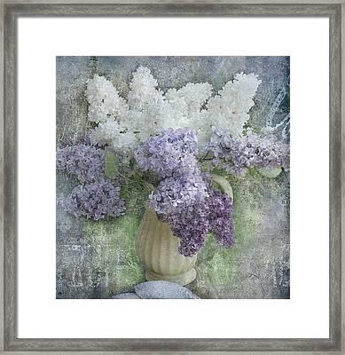 Lilac Framed Print by Jeff Burgess