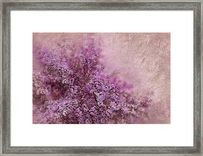 Lilac Splash Framed Print by Svetlana Sewell