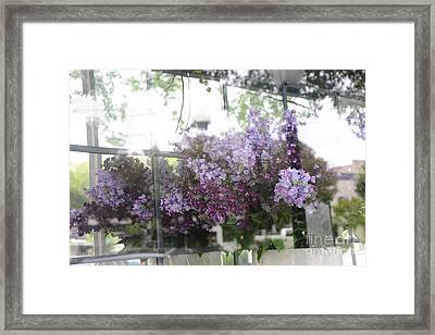 Lilacs Hanging Basket Window Reflection - Dreamy Lilacs Floral Art Framed Print by Kathy Fornal