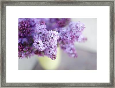 Lilacs In A Vase Framed Print by Rebecca Cozart