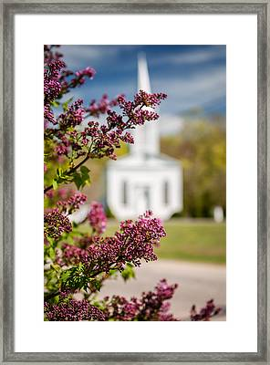 Lilac And Vintage New England Church -  Selective Focus  Framed Print by Thomas Schoeller