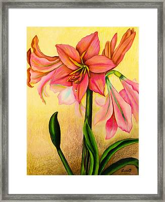 Lilies Framed Print by Zina Stromberg