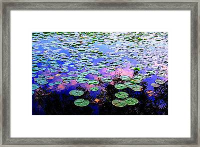 Lilly Pad Sunset Framed Print by Wendell Lowe