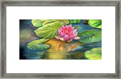 Lilly Pond Framed Print by Kathy Brecheisen