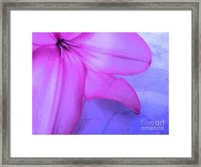Lily - Digital Art Framed Print by Robyn King