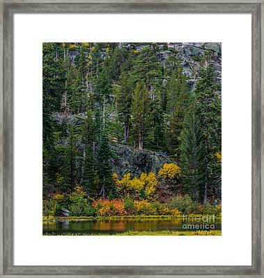 Lily Lake Autumn Framed Print by Mitch Shindelbower