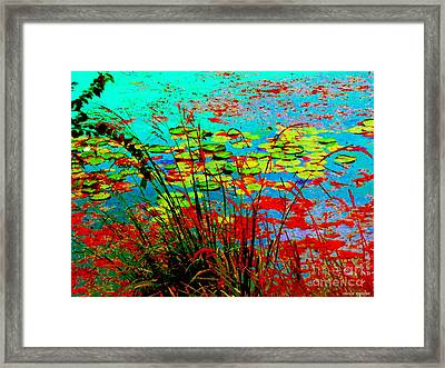 Lily Pads And Reeds Colorful Water Gardens Grasslands Along The Lachine Canal Quebec Carole Spandau Framed Print by Carole Spandau