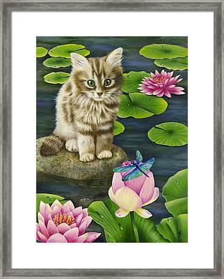 Lilys Pond Framed Print by Carolyn Steele