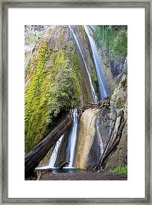 Limekiln State Park Framed Print by Jenna Szerlag