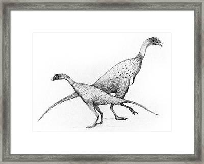 Limusaurus Dinosaurs Framed Print by Nemo Ramjet