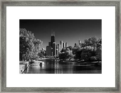Lincoln Park Lagoon Chicago B W Framed Print by Steve Gadomski