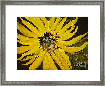 Linda's Arizona Sunflower 2 Framed Print by Sherry Harradence