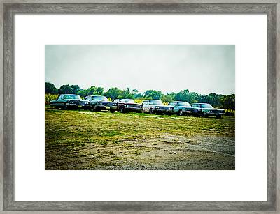 Line Up Framed Print by Off The Beaten Path Photography - Andrew Alexander
