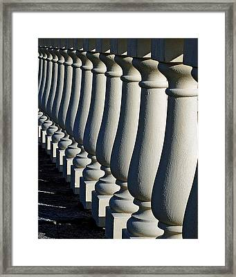 Lineup Framed Print by Lisa Phillips