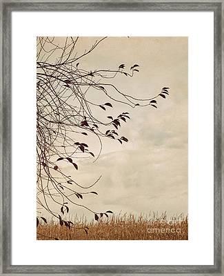 Lingering Leaves Framed Print by Alison Sherrow