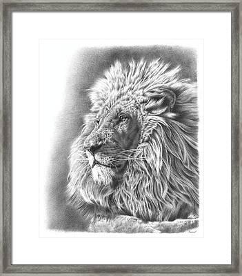 Lion Drawing Framed Print by Remrov Vormer