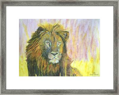 Lion Framed Print by Dylan Williams