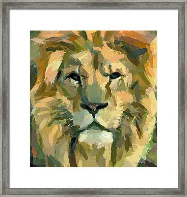 Lion Face Expression Framed Print by Yury Malkov