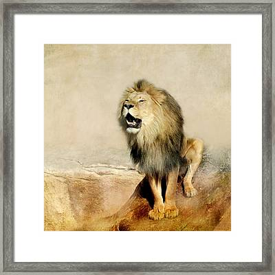 Lion Framed Print by Heike Hultsch