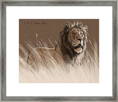 Lion In The Grass Framed Print by Aaron Blaise