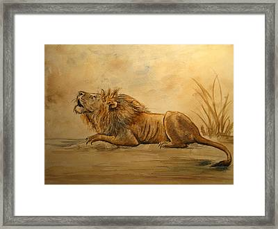 Lion Framed Print by Juan  Bosco