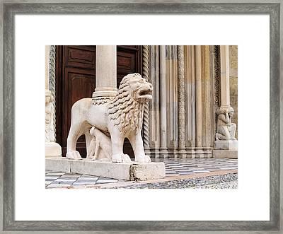 Lion Framed Print by Karol Kozlowski