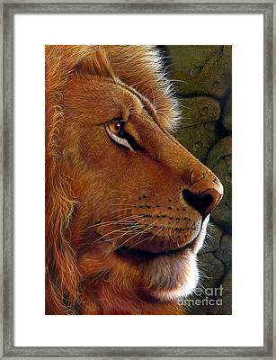 Lion King Framed Print by Jurek Zamoyski