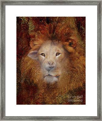 Lion Lamb Face Framed Print by Constance Woods
