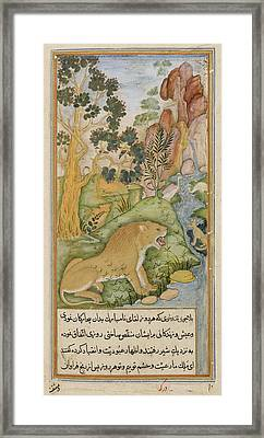 Lion Of The Plains Near Baghdad Framed Print by British Library
