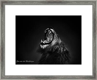African Lion Male Yawning Showing Fierce Canine Teeth Framed Print by Jan Van der Westhuizen