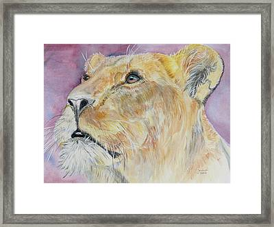 Lioness Framed Print by Janina  Suuronen
