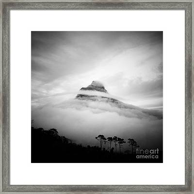 Lions Head Framed Print by Neil Overy