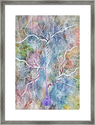 Lipid Branches Framed Print by Sumit Mehndiratta