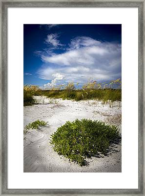 Listen To The Silence Framed Print by Marvin Spates