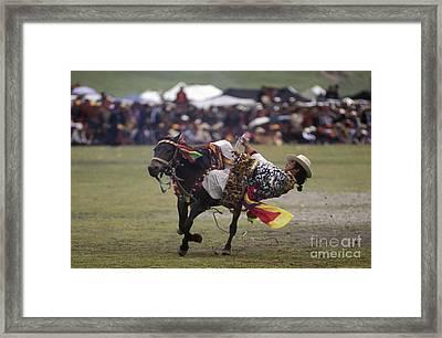 Litang Horse Festival - Kham Tibet Framed Print by Craig Lovell