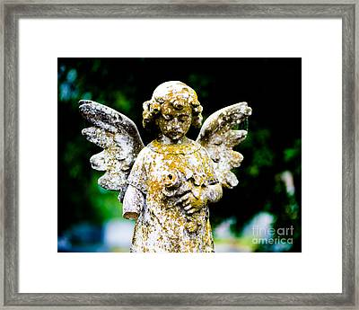 Little Angel Framed Print by Sonja Quintero