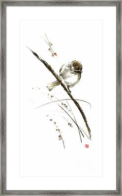 Little Bird On Branch Watercolor Original Ink Painting Artwork Framed Print by Mariusz Szmerdt
