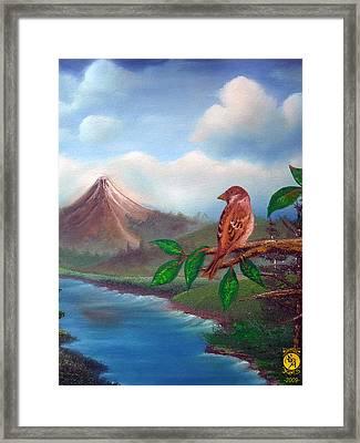 Little Bird Framed Print by Richard Bantigue