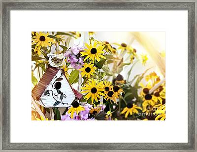 Little Birdhouse Framed Print by Stephanie Frey