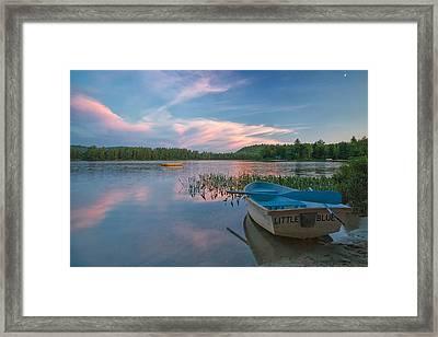 Little Blue Framed Print by Darylann Leonard Photography