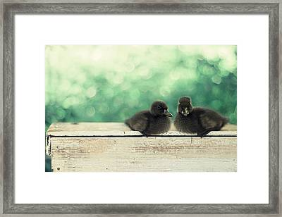 Little Buddies Framed Print by Amy Tyler