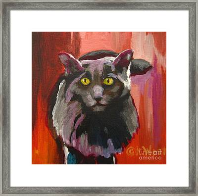 Little Darling Knows Framed Print by Katrina West