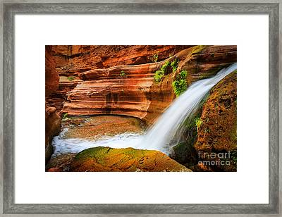 Little Deer Creek Fall Framed Print by Inge Johnsson