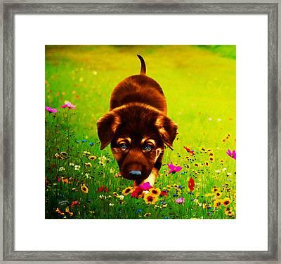 Little Hunter Framed Print by Rebelwolf