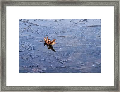 Little Navy - Fram In Pack Ice - Featured 3 Framed Print by Alexander Senin