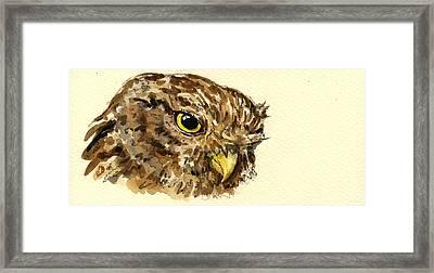 Little Owl Framed Print by Juan  Bosco