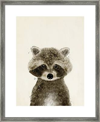 Little Raccoon Framed Print by Bri B