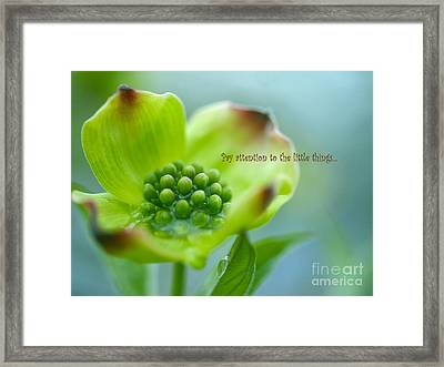 Little Things Framed Print by Irina Wardas