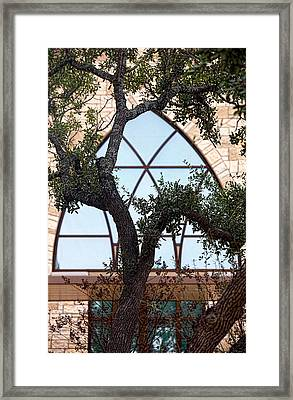 Live Oak In Front Of Church Window Framed Print by Linda Phelps